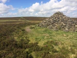 Totley Moor