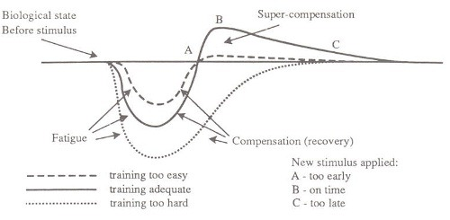 Supercompensation